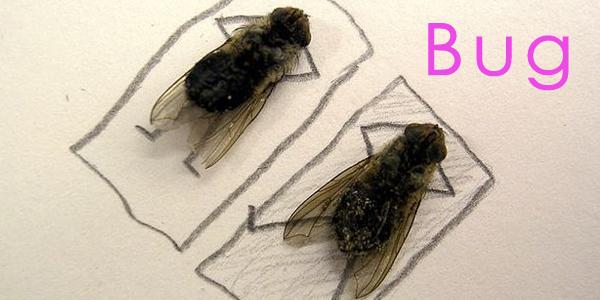 bugheader