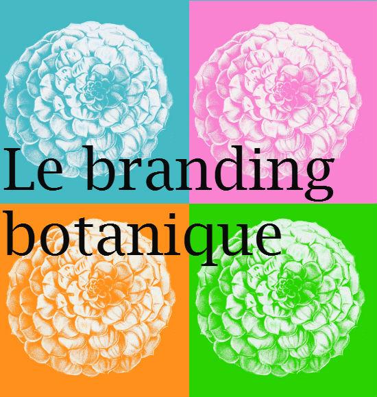 brandingbotanique