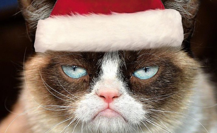 grumpy_cat_christmas_by_michu0022-d6z6lj6-710x434