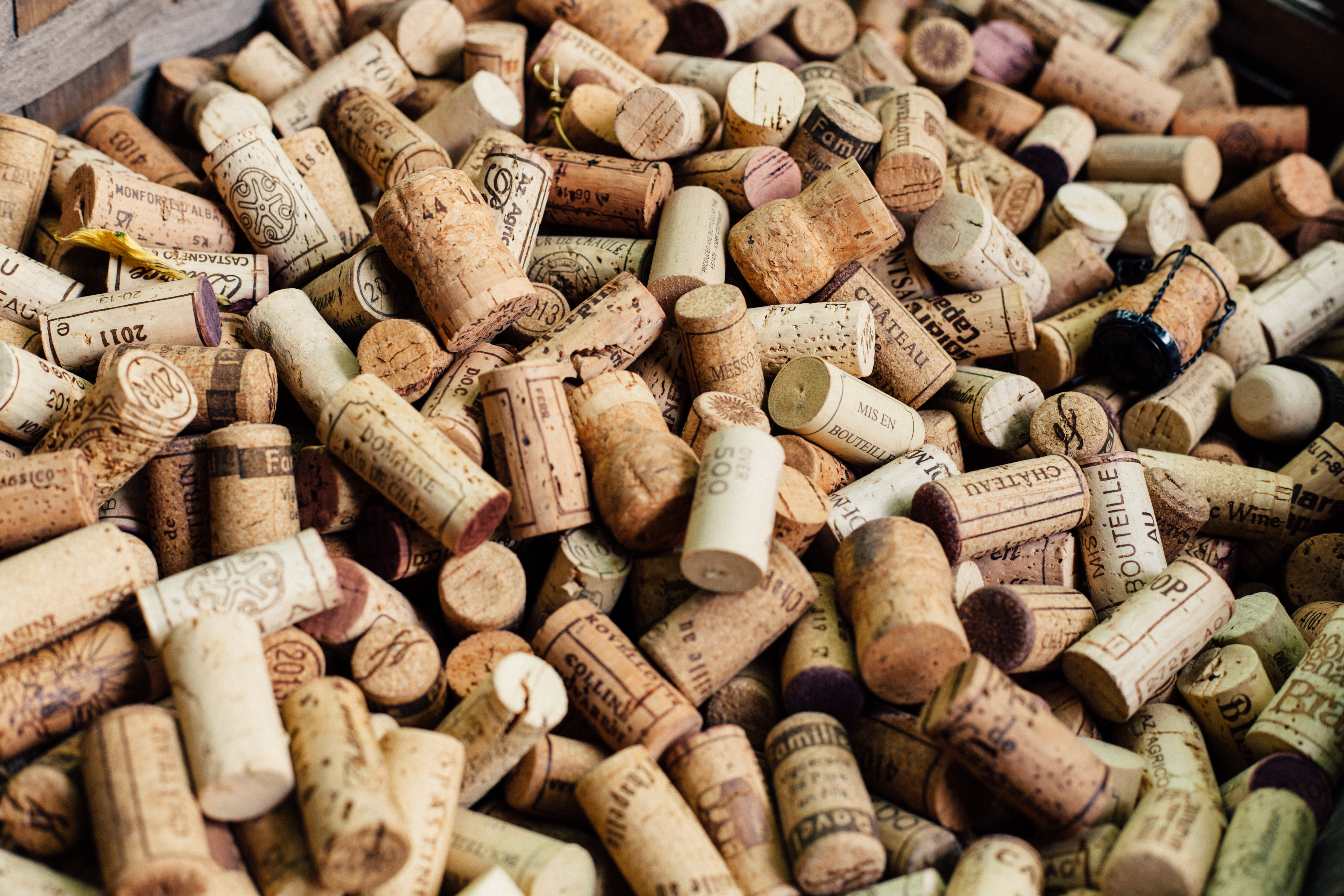 Marques de vins et contrefaçons