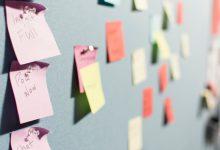 Découvrez nos dernières créations de marques Startup